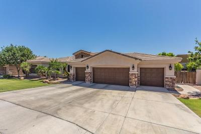 Chandler, Fountain Hills, Gilbert, Queen Creek, Scottsdale, Tempe Single Family Home For Sale: 4191 S Purple Sage Drive