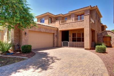 Litchfield Park Single Family Home For Sale: 14650 W Hidden Terrace Loop