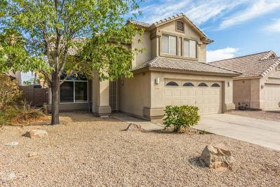 Single Family Home For Sale: 9467 E Pine Valley Road