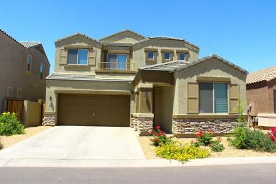 Mesa Single Family Home For Sale: 1024 W Indigo Street