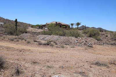 Phoenix Residential Lots & Land For Sale: 33906 N 2nd Avenue
