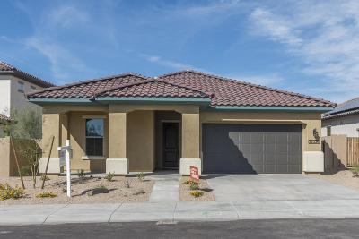 Goodyear Single Family Home For Sale: 12020 S 183rd Drive