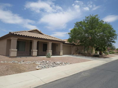 Maricopa Single Family Home For Sale: 41940 W Hall Court
