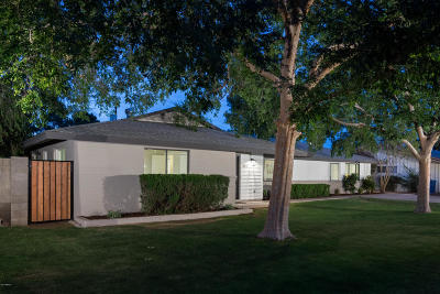 Tempe Single Family Home For Sale: 334 E Palmcroft Drive