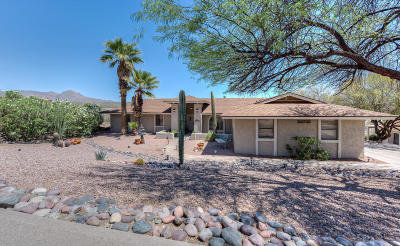 Single Family Home For Sale: 15524 E Tepee Drive