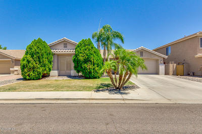Phoenix Single Family Home For Sale: 4328 W Buckskin Trail