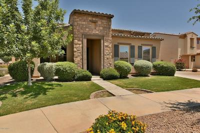 Queen Creek Single Family Home For Sale: 20916 E Via De Arboles