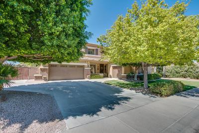 Gilbert Single Family Home For Sale: 444 E Frances Lane