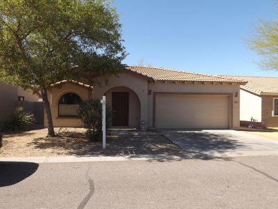 Apache Junction Single Family Home For Sale: 2173 E 28th Avenue