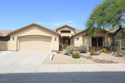 Fountain Hills Single Family Home For Sale: 9216 N Longfeather Drive