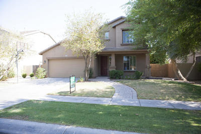 Gilbert Single Family Home For Sale: 4117 E Lexington Avenue