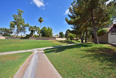 Scottsdale Single Family Home For Sale: 8513 E Welsh Trail