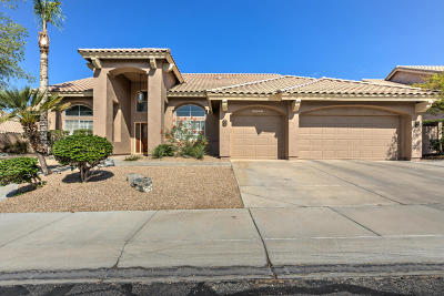 Maricopa County Single Family Home For Sale: 16224 S 14th Way