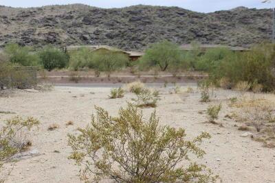 Phoenix Residential Lots & Land For Sale: 29xx E South Mountain Avenue