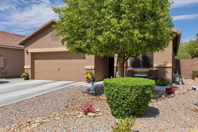 Queen Creek Single Family Home For Sale: 33094 N Falcon Trail