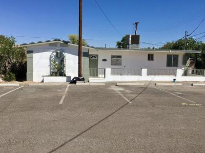 Phoenix Single Family Home For Sale: 1010 E Southern Avenue #BLDG