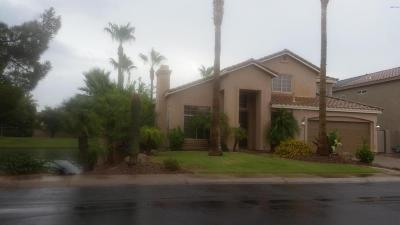 Chandler Single Family Home For Sale: 2702 W Ivanhoe Street