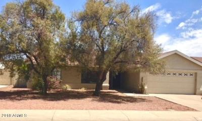Chandler Single Family Home For Sale: 4660 W Whitten Street
