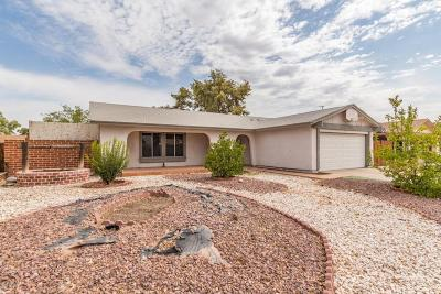 Chandler Single Family Home For Sale: 464 W Highland Street