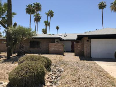 Phoenix Single Family Home For Sale: 823 W Port Au Prince Lane
