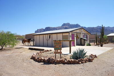 Apache Junction Single Family Home For Sale: 5136 E 10th Avenue