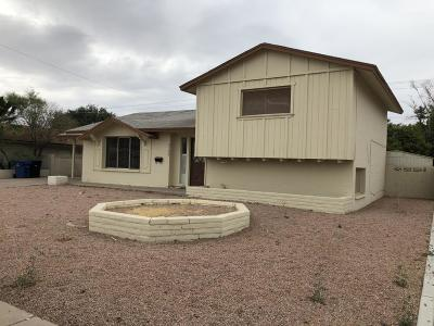 Tempe Single Family Home For Sale: 4700 S Grandview Avenue