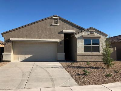 Maricopa Single Family Home For Sale: 41323 W Crane Drive