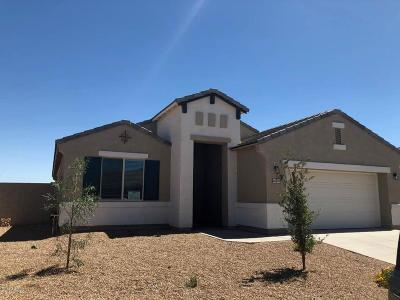 Maricopa Single Family Home For Sale: 40949 W Williams Way