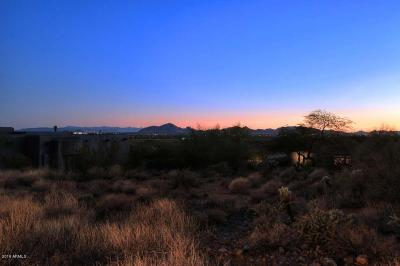 Scottsdale Residential Lots & Land For Sale: 12946 N 116th Street