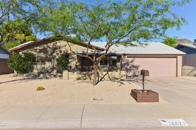 Phoenix Single Family Home For Sale: 12829 N 21st Drive
