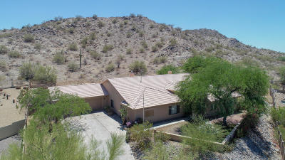 Goodyear Single Family Home For Sale: 18138 W San Esteban Drive