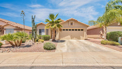 Scottsdale Single Family Home For Sale: 7262 E Camino Del Monte