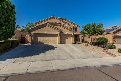 Peoria Single Family Home For Sale: 9136 W Pontiac Drive