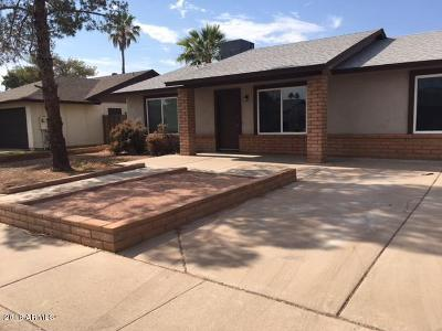 Chandler Single Family Home For Sale: 809 W Nopal Place