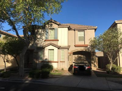 Tolleson Single Family Home For Sale: 2808 S 100th Drive