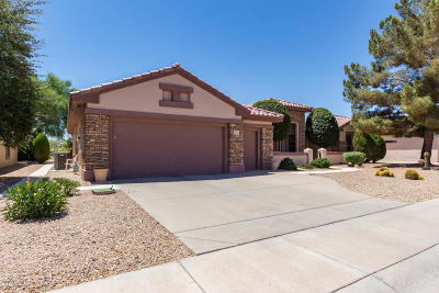 Surprise Single Family Home For Sale: 15719 W Clear Canyon Drive