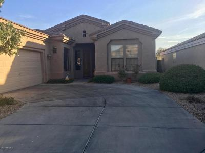 Cave Creek Single Family Home For Sale: 34038 N 43rd Street