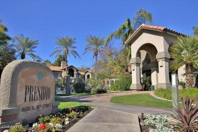Scottsdale Rental For Rent: 9600 N 96th Street #225