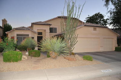 Cave Creek Single Family Home For Sale: 29450 N 46th Place