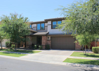 Gilbert Single Family Home For Sale: 4157 E Palo Verde Street