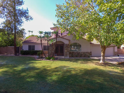 Phoenix Single Family Home For Sale: 202 E Brook Hollow Drive