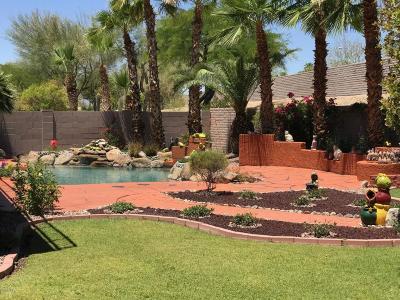 Phoenix Single Family Home For Sale: 1344 W Muirwood Drive