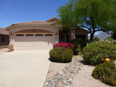 Gold Canyon Single Family Home For Sale: 9102 E Avenida Las Noches