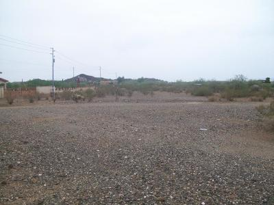 Surprise Residential Lots & Land For Sale: 29640 N 161st Avenue