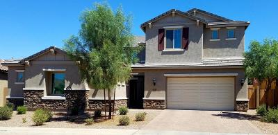 Mesa Single Family Home For Sale: 11038 E Travertine Avenue