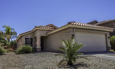 San Tan Valley Single Family Home For Sale: 31541 N Sundown Drive