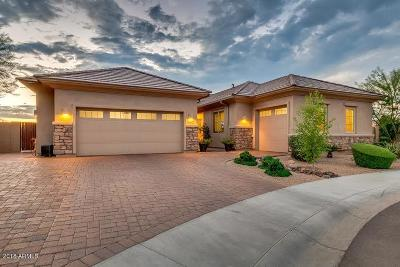 Cave Creek Single Family Home For Sale: 5608 E Little Wells Pass
