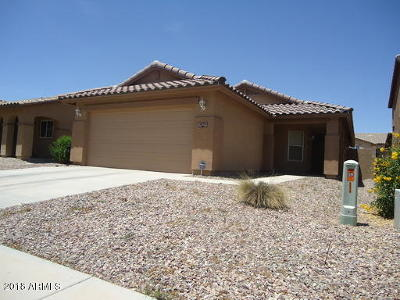 San Tan Valley, Queen Creek Single Family Home For Sale: 1478 E Poncho Lane