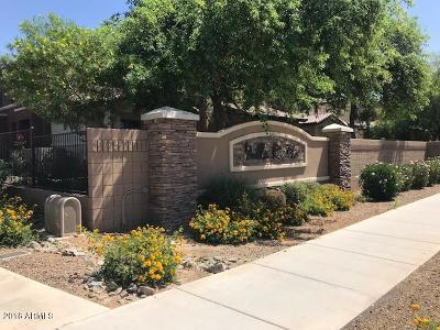 0, Apache County, Cochise County, Coconino County, Gila County, Graham County, Greenlee County, La Paz County, Maricopa County, Mohave County, Navajo County, Pima County, Pinal County, Santa Cruz County, Yavapai County, Yuma County Rental For Rent: 7726 E Baseline Road #231