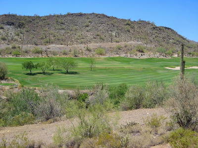 Peoria Residential Lots & Land For Sale: 16767 W Peaceful Valley Road